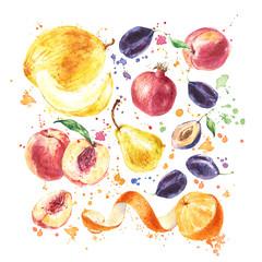 Fruit set with Orange fruit, Melon, Pear, Peach, Plum, Pomegranate, Watercolor painting