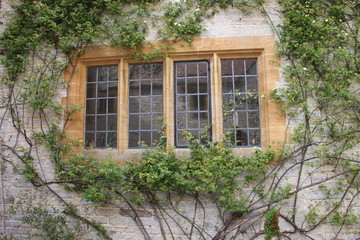 Mullion window