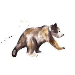 Little brown bear, isolated, watercolor