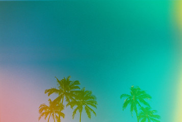multi colored palm trees with green blue pink and yellow