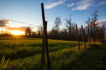 Barb Wired Fense in front of a farm field during a beautiful sunset. Taken in Surrey, Greater Vancouver, British Columbia, Canada.