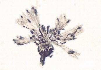 Flower drawing art illustration