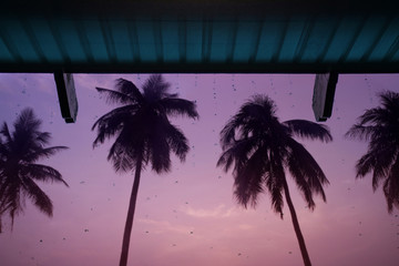 Rainy Day, Low angle view of Rain falling from House roof on Tropical Island in Sunset, Silhouette of Palm Tree as background