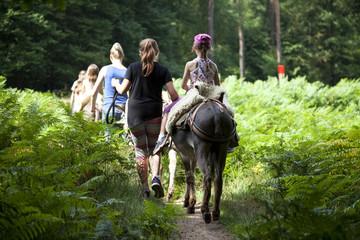 Foto auf Gartenposter Esel Eselwanderung
