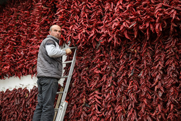 A man puts a bunch of peppers on the wall of his house to dry in the village of Donja Lakosnica