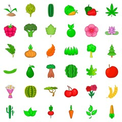 Botany icons set, cartoon style