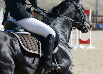 Black sport horse and rider on gallop. Horse show jumping in details.
