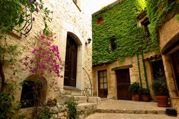 Narrow street with ivy and bougainvillea in medieval village of Tourrettes-sur-Loup, Provence, France