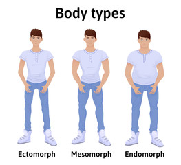 Constitution of human body. Man body types. Endomorph, ectomorph and mesomorph. Young men in t-shirts and jeans. Vector illustration, isolated on white background.