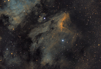 Pelican Nebula orIC 5067/70 in Cygnus constellation.