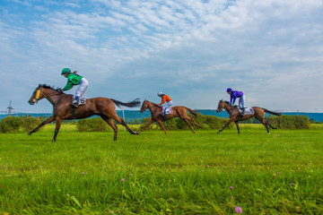 Horses race by
