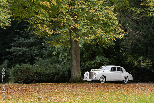 Hochzeit Auto Stock Photo And Royalty Free Images On Fotolia Com