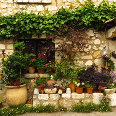 picturesque stone wall with flowers and ivy in medieval village of Gourdon, Provence, France