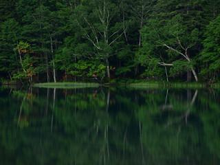 北海道 オンネトー 湖に映る木々