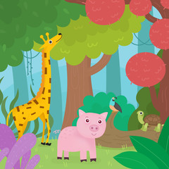 Animals in the forest.