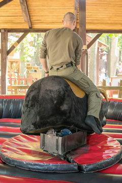 Attraction, in which a man is held on a bull, rear view