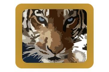 sumatran tiger in frame