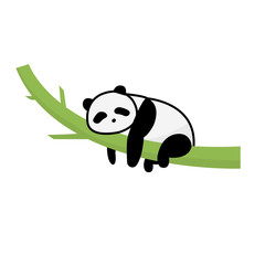 Panda sleep on tree vector isolated white.Panda cartoon rest on bamboo.