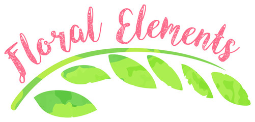 Word floral elements on white background