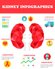 Infographic poster with kidney illustration and medical icons.