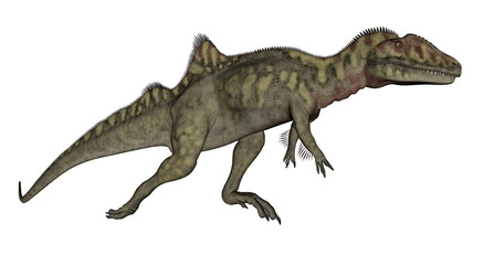 Concavenator dinosaur walking - 3D render