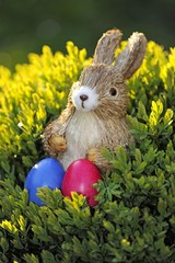 Easter bunny figure with brightly coloured Easter eggs