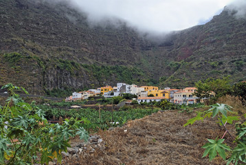 The small pristine coastal village of Agulo, banana plantation, La Gomera, Canary Islands, Spain, Europe