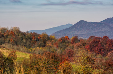 ridge with peaks above hillside with forest. lovely mountainous background in late autumn