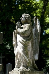 Angel, Statue, Alter Friedhof cemetery, Bonn, Rhineland, North Rhine-Westphalia, Germany, Europe