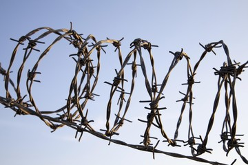 Rolled barbed wire