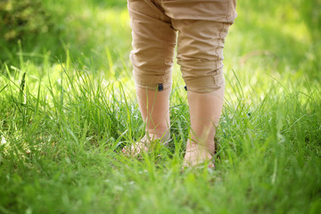 Little child walking on green grass in park