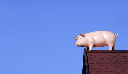 Pig on a roof, advertising figure of a sausage factory
