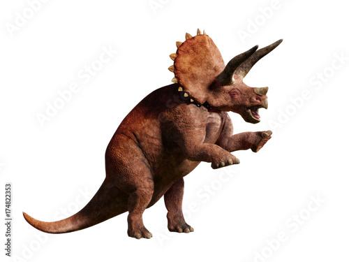 Triceratops horridus, Ceratops dinosaur of the late Cretaceous period in action