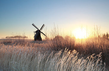 Fototapete - sunrise over Dutch windmill on frosty morning