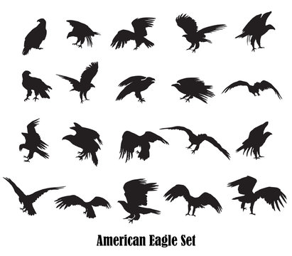 Set of vector american eagle silhouettes