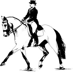 jockey on horse drawn with ink on a white background