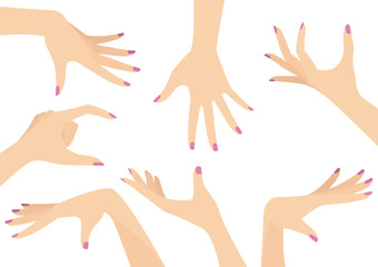 Vector Set of Beautiful Woman Hands