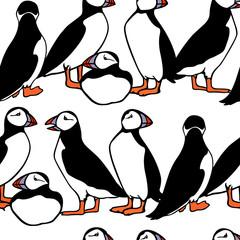 Atlantic puffin pattern