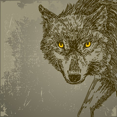 Foto op Plexiglas Hand getrokken schets van dieren Beautiful background with wolf. Vintage style. Vector illustration.