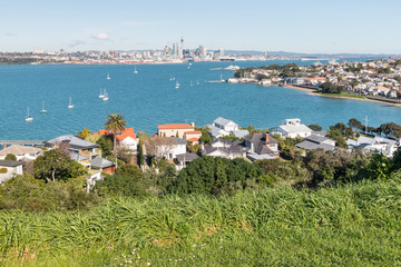 Auckland panorama with Devonport suburb in foreground