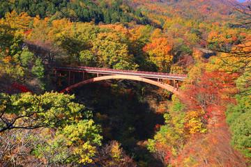 秋の雪割り橋(福島県・西郷村)