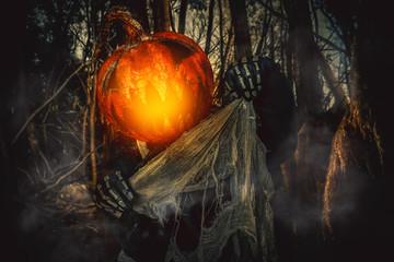 head of pumpkin