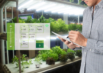 Wall Mural - smart agriculture in futuristic concept, farmer use technology to monitor, control and adjustment led, atmosphere,humidity, water level and keep tracking harvesting time in vertical or indoor farming