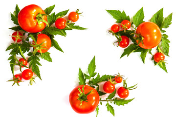 Fresh juicy tomatoes, cherry and leaves pattern and ornament on a white background with copy space flat view from above and place for text isolates
