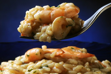 Risotto with shrimp Risotto con i frutti di mare mit Garnelen ризотто с креветками katkarapulla