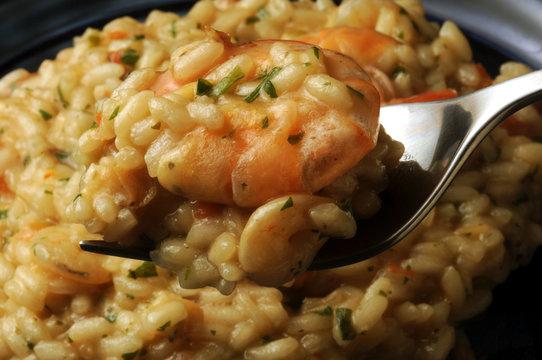 Risotto with shrimp Risotto con i frutti di mare mit Garnelen ризотто с креветками katkarapulla