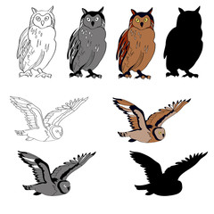 Vector illustration, an image of an owl in different angles, a sitting owl, a flying owl. Black line, black and white and gray spots, black silhouette, color image
