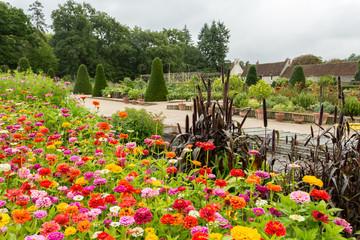 Jardin potager fleuri