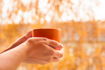 Autumn concept. Close up view of cup with yellow leaves on background.