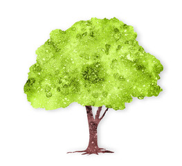 Watercolor green tree isolated on white background
